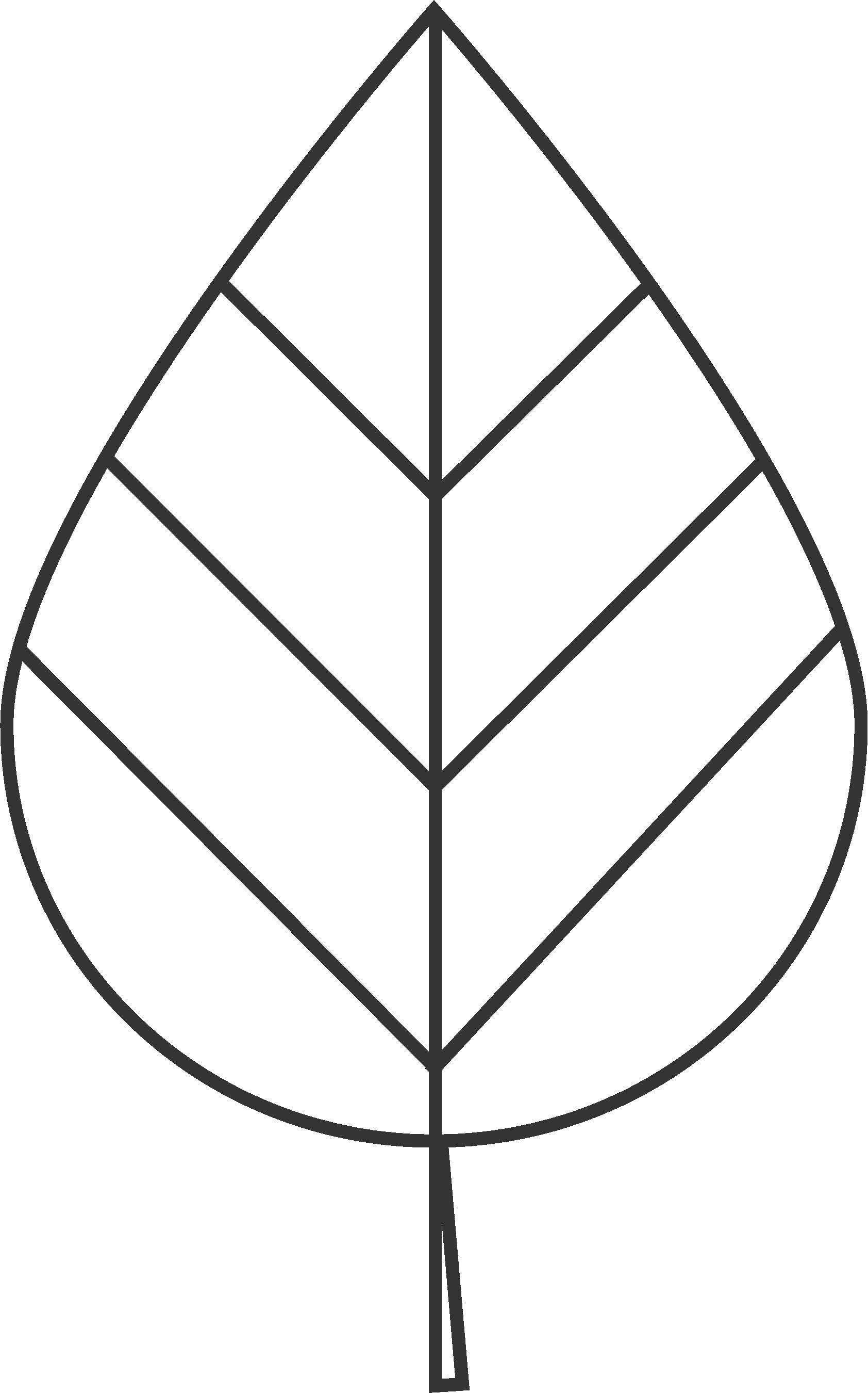 bøgeblad